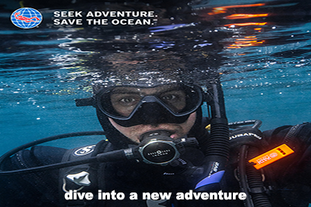 guided diving start your adventure