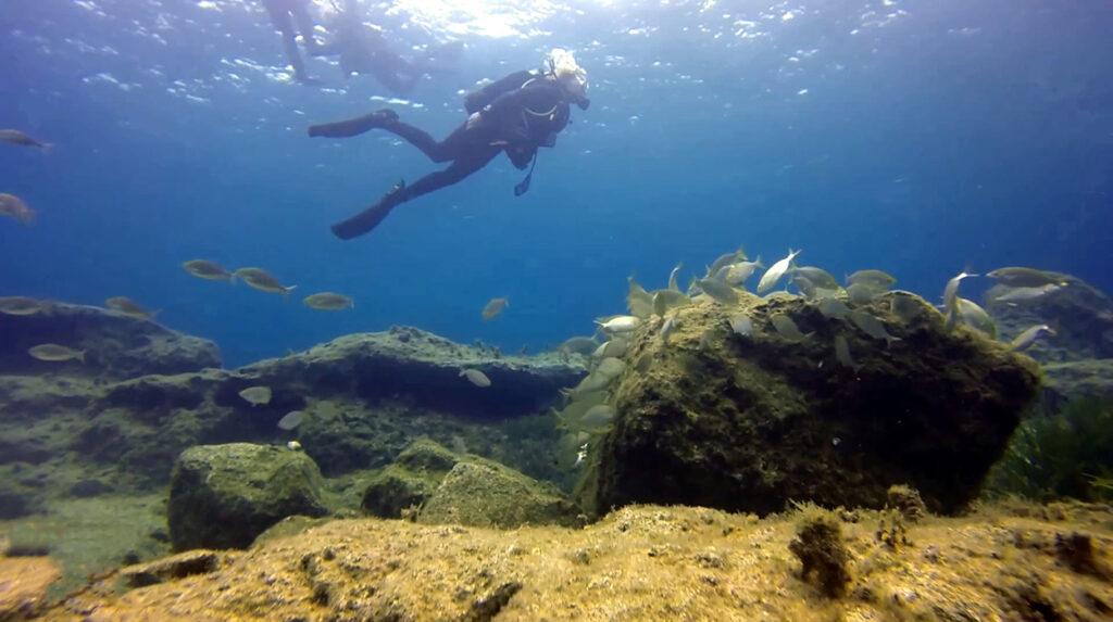 aquaventure gift vouchers